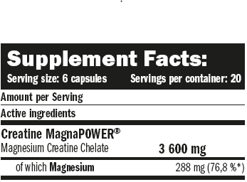 CREATINE MAGNAPOWER 120 CAPS