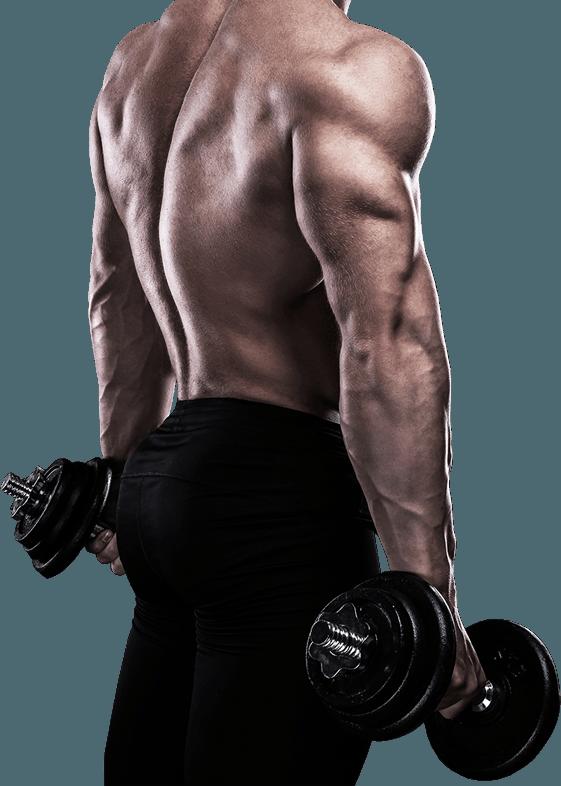 Entrenamiento y Endurance